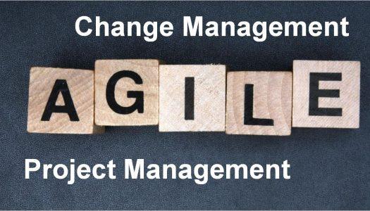 Agile: как превратить разрозненные отделы большой компании в команду единомышленников
