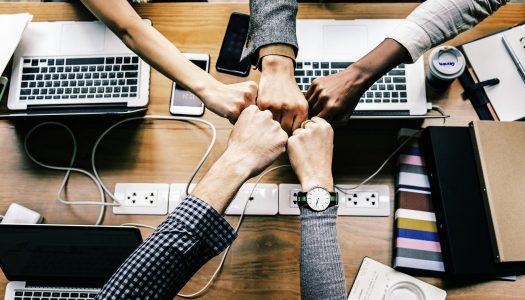 5 фактов об эффективной команде
